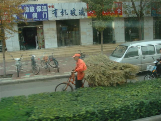 China1/01Louyang02.JPG